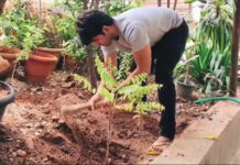 Allu Sirish Accepts Green India Challenge