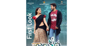 'రాధాకృష్ణ' చిత్రం